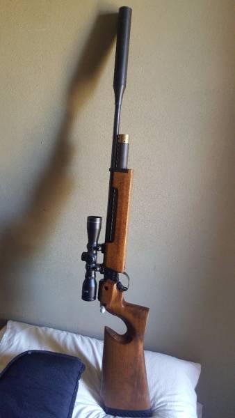 Air Rifle, Precision Air Rifle